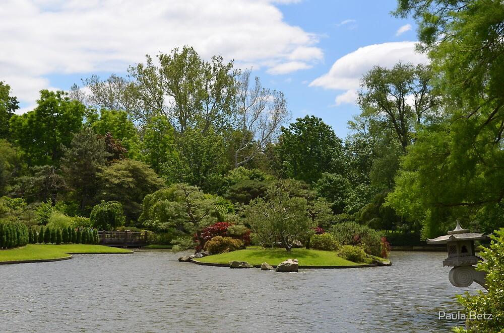 Japanese Garden View by Paula Betz