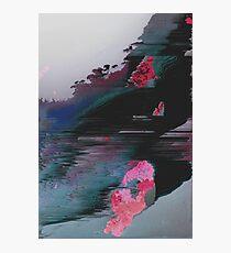 COV07 - LICHEN Photographic Print