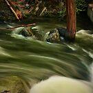 Flowing by Barbara  Brown