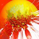 abstract sun by webgrrl