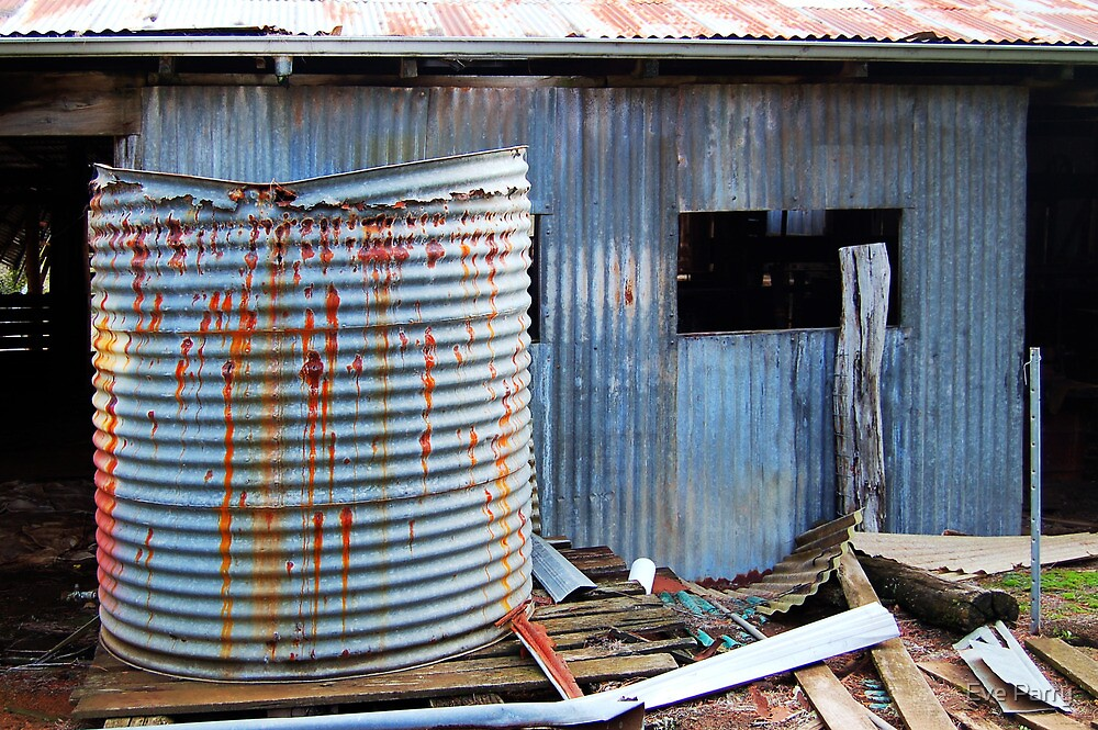 Rusty Water Tank # 1  by Eve Parry