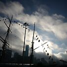 fog lift. melbourne, australia by tim buckley | bodhiimages