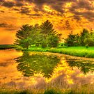 Sunset on the Pond by DougOlsen