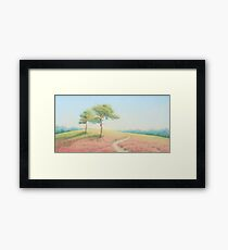 Pines, Evening Sun, New Forest Framed Print