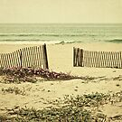 Peaceful Beach by Suzanne Cummings