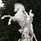 Man & Horse by Lee d'Entremont