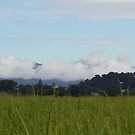 Mount Warning by Anne-Marie Bokslag