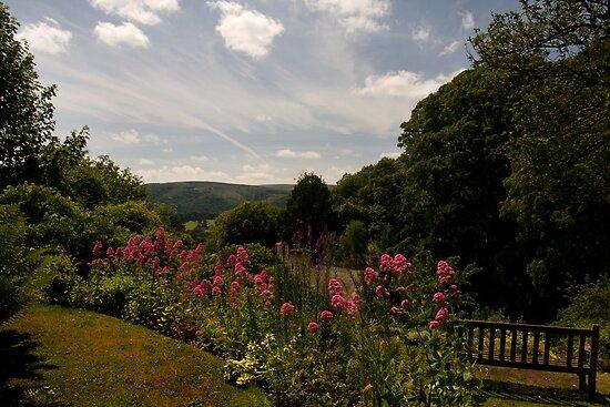 Selworthy Rest and Tranquility, Exmoor by David  Rowlatt
