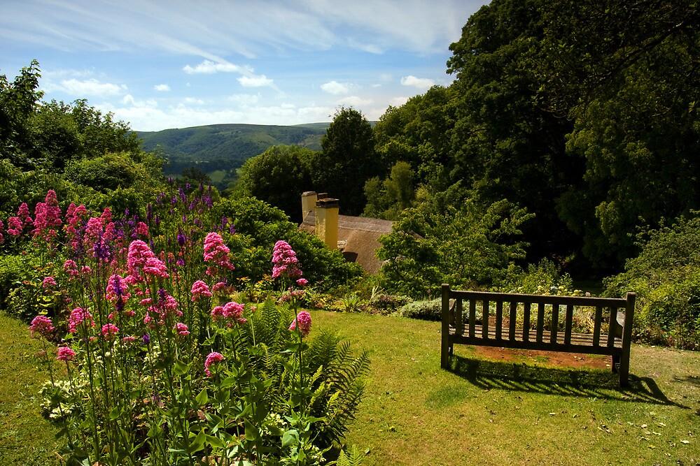 Selworthy, A Time to Reflect, Exmoor by David  Rowlatt