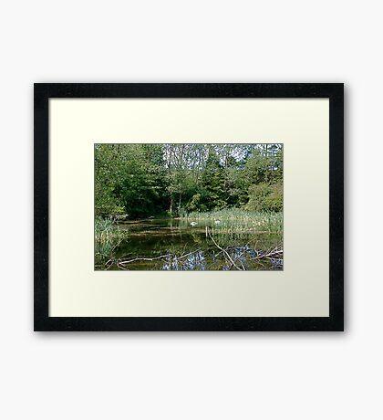 The upper end of hidden lake Framed Print
