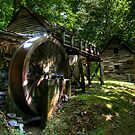Old Grist Mill by Jane Best