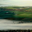 Fog over the Fields by Kym Howard
