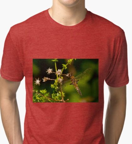Four Spotted Skimmer Dragonfly Tri-blend T-Shirt