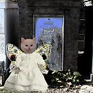 Angel Kitty by Loveday Funck