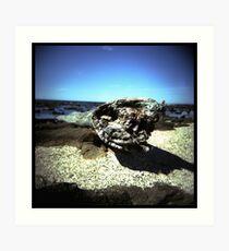 Coast #05 Art Print