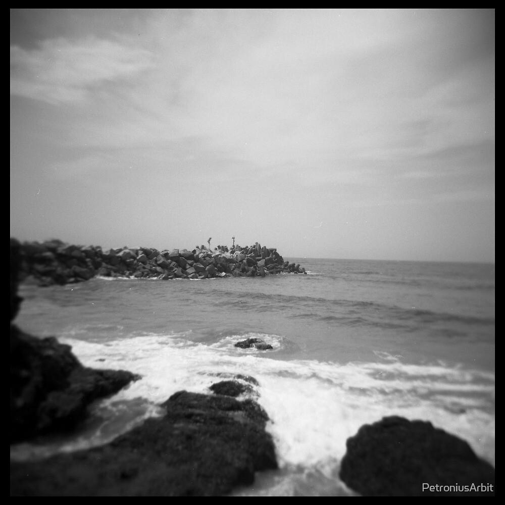 Coast #08 by PetroniusArbit