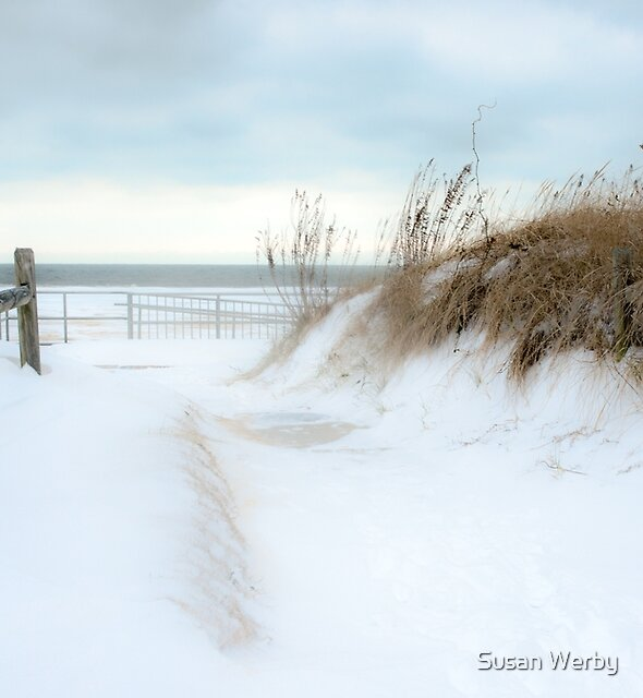 A Snowy Invitation by Susan Werby