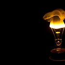 Ignite - Birth of an idea - Burning Bulb by Biren Brahmbhatt