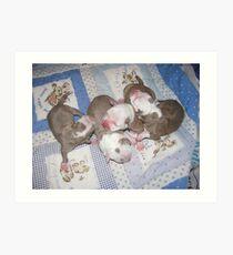 Precious Newborns Art Print