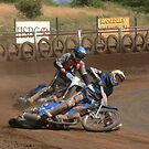 Speedway by Lee Twigger