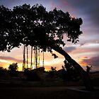 A tree! by vasu