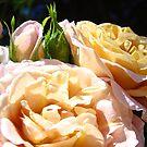 Rose Garden Floral art prints Pink Orange Roses Baslee Troutman by BasleeArtPrints