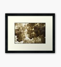 Dream With A Dream  III Framed Print