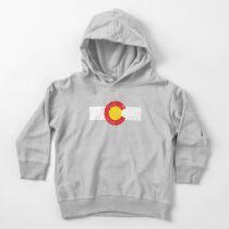 Vintage Colorado Flag Toddler Pullover Hoodie