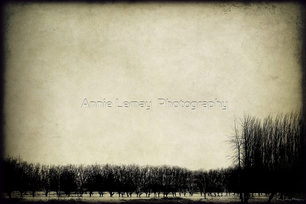 Moods by Annie Lemay  Photography