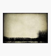 Moods Photographic Print