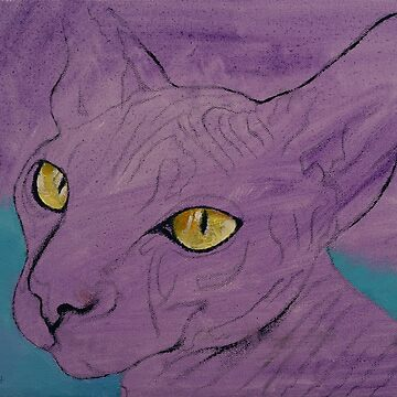 Purple Sphynx by michaelcreese