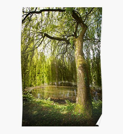 The Willow Tree Poster