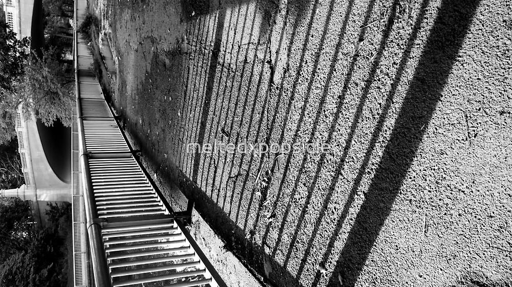 Shadow Path by Jessica Liatys