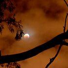 sunrise (on the moon) by Naia