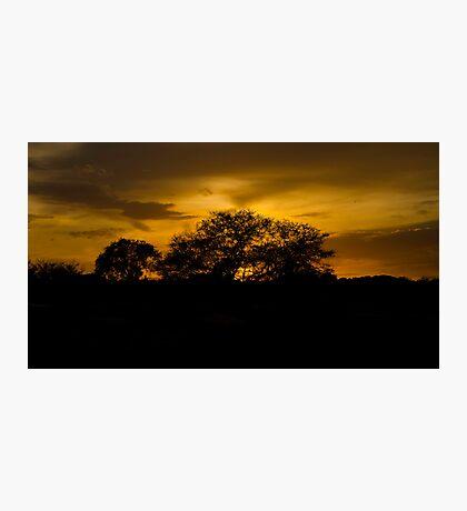 Scenic sunset! Photographic Print