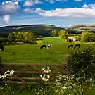 Appleby, Pennines in the Distance  by Elaine123