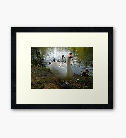 Meet The Family! Framed Print