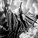 Haunting Deep Waters by Erica Yanina Horsley