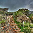 Yallingup Steps by Chris Paddick