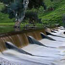 """Overflow"" by Dave  Hartley"