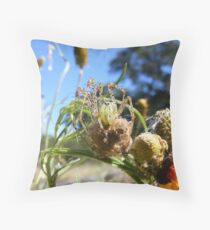 Stareing at a Thorny Spider Throw Pillow