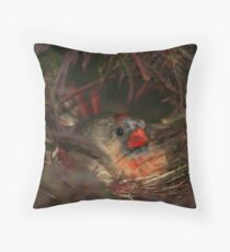 Nesting Instinct Throw Pillow