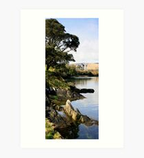 Puxley Mansion - Dunboy, Beara, Ireland Art Print