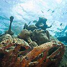 Arimoroa Wreck, Egg Island, Eleuthera, Bahamas by Shane Pinder