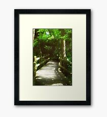 Nature Walk © Framed Print
