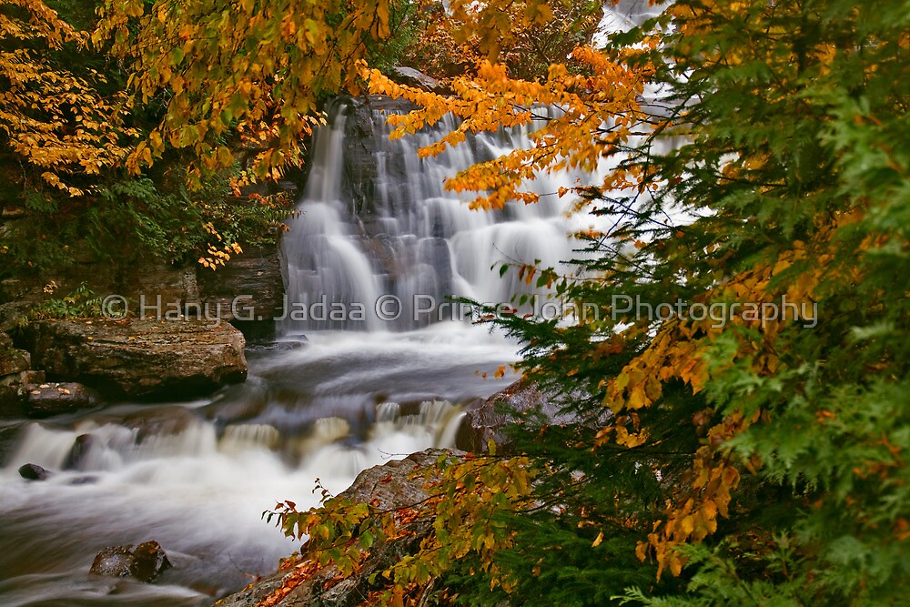 Fall In Fall by © Hany G. Jadaa © Prince John Photography