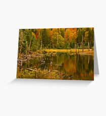 Intimate Reflections  © Greeting Card