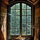 Old window in Bokrijk by Patrick Reinquin
