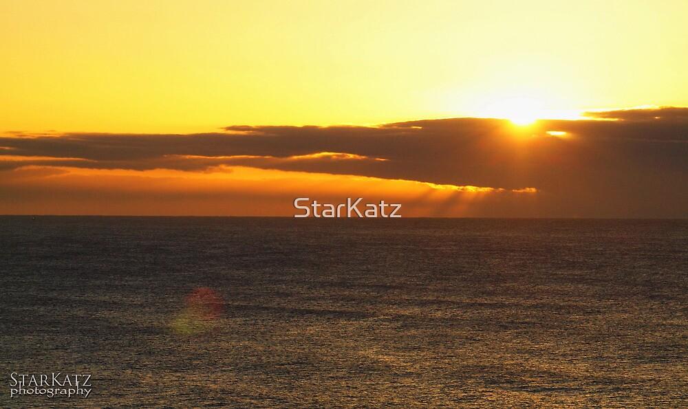 ~Sunrise at Warriewood~ by StarKatz
