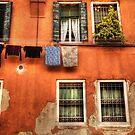 Venice washing #2 by Luke Griffin
